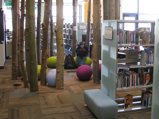 Child studying on his laptop inside of Basalt Library where BG provided MEP, lighting, technology, and commissioning services